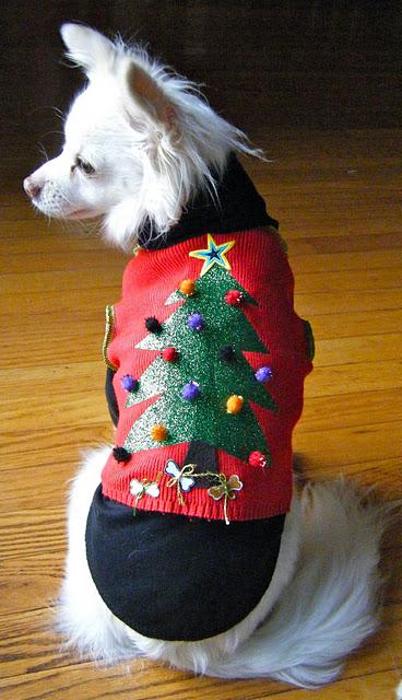 Ugly dog vest